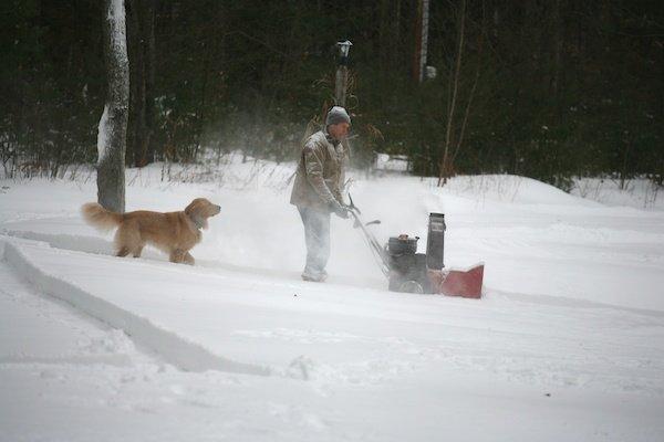 snowblowingdog (4)
