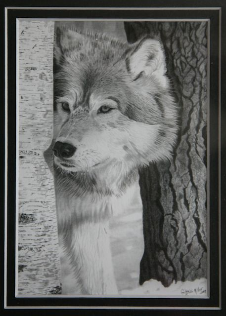 Pencil drawing by Glynnis Miller
